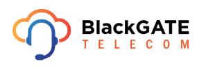 BlackGATE Telecom partner Regio-Glasvezel